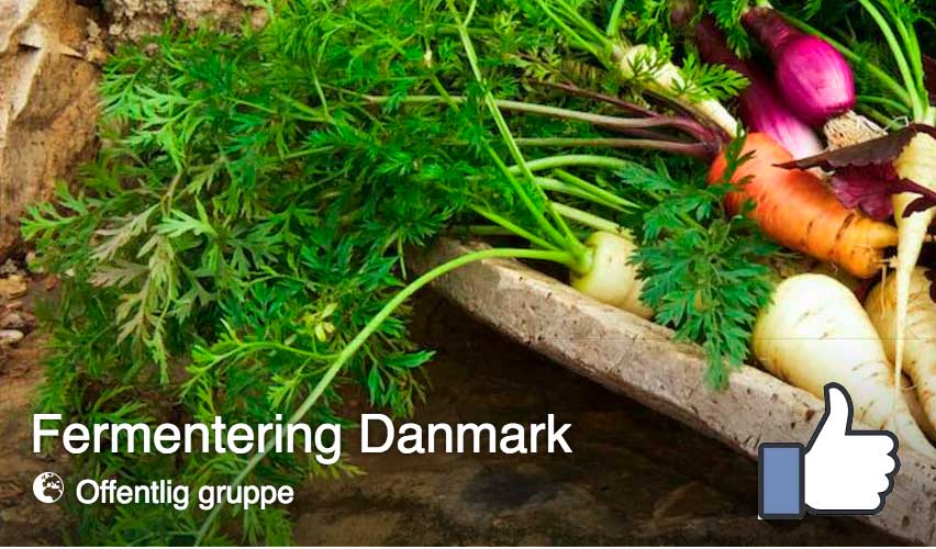 fermentering-danmark