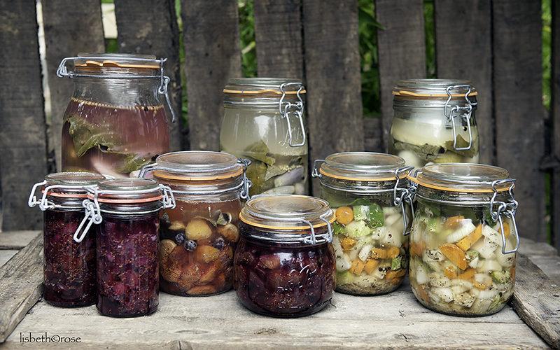 hvad er fermenterede grøntsager
